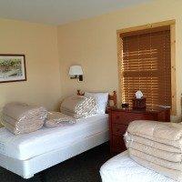 Dezinsectie deratizare hoteluri si pensiuni